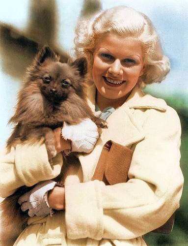 Jean Harlow w Dog