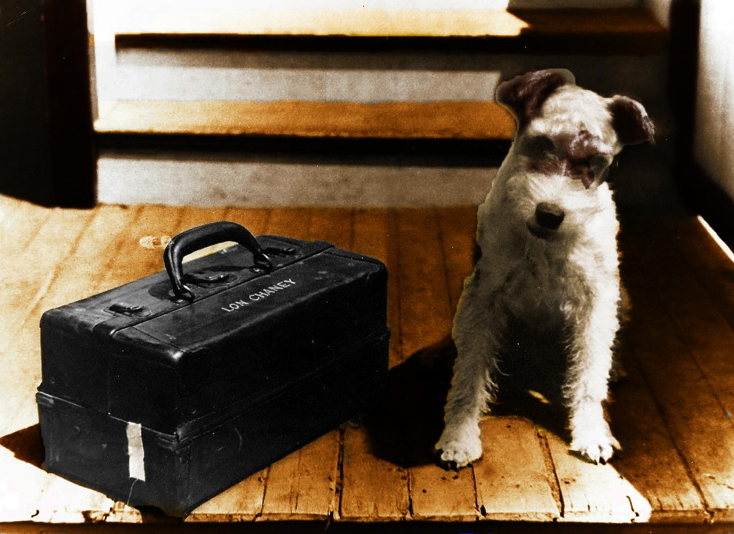Lon Chaney's Dog_edited-Final Final