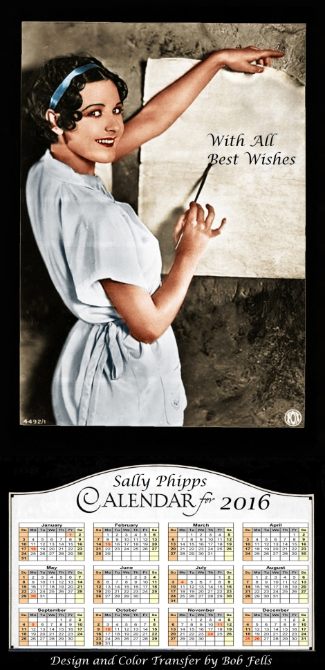 2016 Sally Phipps Calendar Final copy